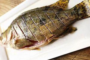 10 công dụng chữa bệnh tuyệt vời từ cá mú