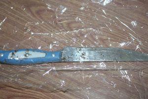 Quảng Ngãi: 2 hung thủ dùng dao đâm chết người ra đầu thú