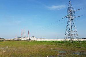 Ai cho phép Cty TNHH MTV Công nghiệp Hạ Long trồng cột điện trên đất của người khác?