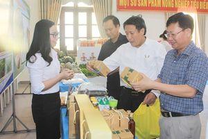 Quảng Trị triển khai kế hoạch sản xuất vụ Hè Thu 2018