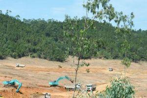 Công ty Trung Đô san bằng 32ha đất rừng, xây nhà máy nghìn tỉ không phép