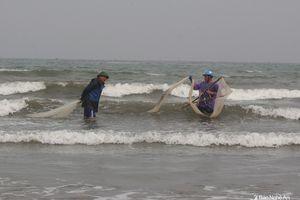 Ngư dân Nghệ An 'săn' ốc cườm thu tiền triệu mỗi ngày 