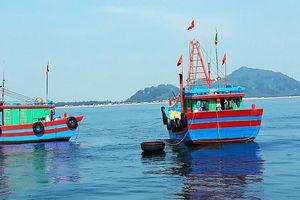 Bắt 2 tàu giã cào tận diệt hải sản trên vùng biển Hà Tĩnh