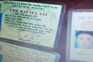 Lời khai của 'cán bộ kiểm lâm' giúp sức cho đại gia ma túy Lạng Sơn
