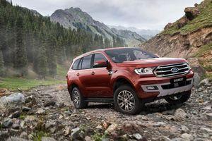 Ford Everest 2019 sẽ có động cơ giống Ranger Raptor