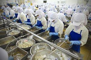 Việt Nam xuất khẩu tôm sang EU đạt 134,9 triệu USD