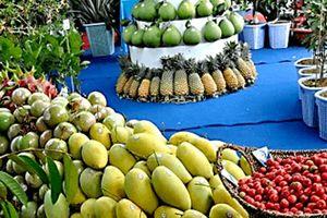 Gần 1.000 tấn trái cây sẽ được trưng bày tại lễ hội trái cây Nam Bộ 2018