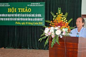 Phát triển diện tích cây ăn quả ở Gia Lai lên 10.000 ha
