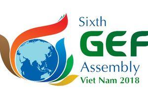 Thành lập các Tiểu ban phục vụ Đại hội đồng Quỹ Môi trường toàn cầu lần thứ 6 và các sự kiện liên quan tại Việt Nam
