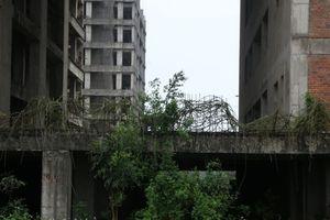Cận cảnh 'hoang tàn' dự án bệnh viện 700 giường đầu tư 850 tỉ đồng