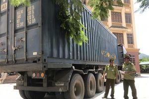 Lạng Sơn: Bắt container vận chuyển 30 tấn than không có giấy tờ
