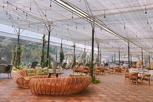 Giới trẻ chết mê với quán cafe view cánh đồng hoa ở Đà Lạt