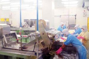 Doanh nghiệp ngành F&B tăng đầu tư mở rộng hệ thống