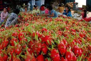 Điểm danh những trái cây Việt đã 'xuất ngoại' thành công