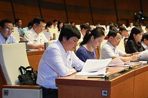 Quốc hội thảo luận về sử dụng vốn, tài sản nhà nước tại DN