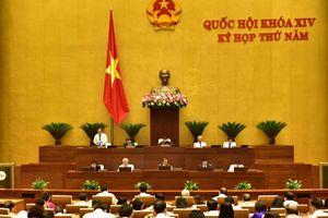 Quốc hội giám sát tối cao việc quản lý vốn, tài sản, cổ phần hóa DNNN