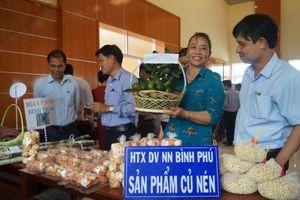 Quảng Ngãi: Triển khai chương trình 'Mỗi xã một sản phẩm' tại Bình Sơn