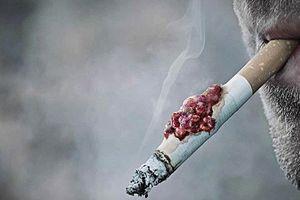 Người cai nghiện thuốc lá nên ăn những loại thực phẩm nào?