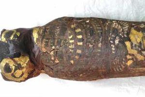 Sự thật gây sốc về xác ước Ai Cập 2.100 năm