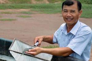 Sáng tạo mô hình nuôi tôm trong hồ tròn hiệu quả bậc nhất đất Bạc Liêu