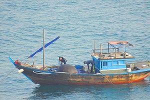 Tạm giữ tàu đánh cá bằng thuốc nổ tại vùng biển Sơn Trà