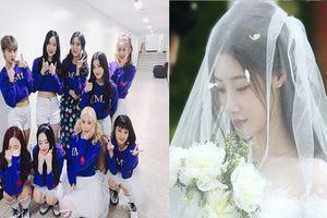 Bất ngờ chưa! Không phải Nancy, 'nữ thần thế hệ mới' Chaeyeon (DIA) sẽ xuất hiện trong MV mới của Momoland