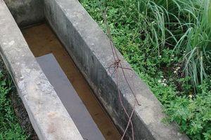 Điện giật khiến bé trai 10 tuổi t.ử v.o.n.g ở huyện Quốc Oai, Hà Nội