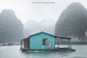 Không cấp phép chiếu 'Tạm biệt Hạ Long' của đạo diễn Việt kiều ngay trước thềm Liên hoan Phim Tài liệu