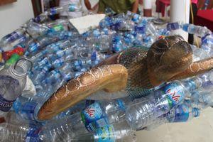 8 triệu tấn chất thải nhựa đổ ra đại dương mỗi năm