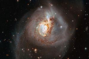 Ngoạn mục ảnh thiên hà NGC 3256 trong diện mạo kỳ lạ