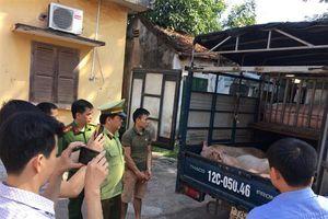 Lạng Sơn: Bắt giữ ô tô vận chuyển trên 1,5 tấn thịt lợn nhập lậu