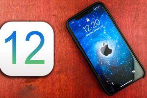 Những cài đặt bảo mật cần thực hiện ngay trên iOS 12 (Phần 1)