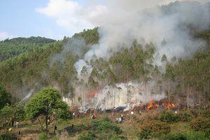 Bắc Giang: Đề cao công tác phòng, chống cháy rừng