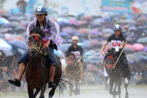Hàng nghìn người xem đua ngựa trong mưa lớn ở Lào Cai