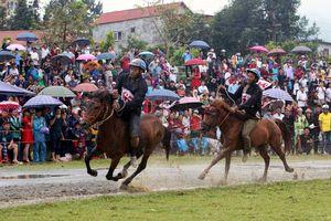 Hấp dẫn Giải đua ngựa truyền thống huyện Bắc Hà 2018