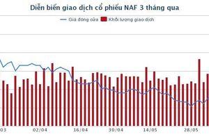 NAF: Chuyển nhượng hơn 3,2 triệu cổ phần tại 2 công ty con cho 3 cá nhân
