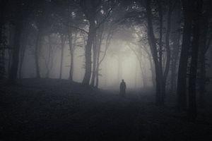 Những vụ mất tích bí ẩn ở ''tam giác quỷ' Bennington