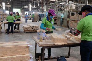 ANZFTA thúc đẩy mạnh mẽ xuất khẩu gỗ sang Australia?
