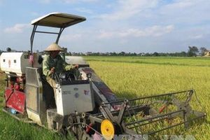 Dồn điền đổi thửa góp phần tăng giá trị sản xuất nông nghiệp lên 2,4%/năm