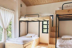 Đà Lạt: Những homestay có phòng dorm đã xinh lại còn rẻ