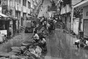 Nhìn lại trận bão kinh hoàng tàn phá Hong Kong 50 năm trước