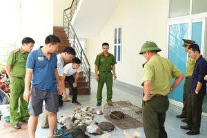 Bắt xe khách vận chuyển trái phép động vật hoang dã từ Lào về Việt Nam