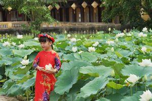 Sen trắng rực rỡ trong Hoàng cung Huế