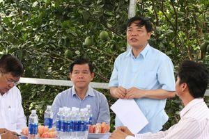 Bà Rịa- Vũng Tàu: Tập trung xây dựng nền nông nghiệp đặc sản
