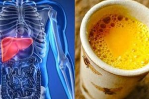Uống ly này trước khi đi ngủ, gan thải hết sạch độc tố và ngủ ngon cho tới sáng