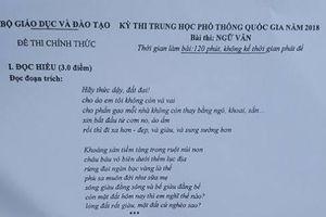 Thơ Nguyễn Duy vào đề thi môn Ngữ văn chính thức kỳ thi THPT quốc gia 2018