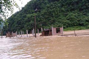 Hà Giang: 'Trời đổ mưa, hồ thủy điện xả lũ', nhà dân ngập trong nước