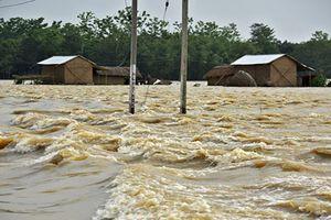 Mưa lũ kinh hoàng, đường phố Ấn Độ biến thành sông