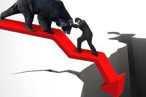 Cổ phiếu HAG, DLG và QCG của 3 đại gia Phố núi đã 'đi về nơi xa lắm'