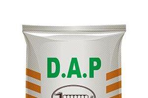 Phân bón DAP chịu thuế NK 6%